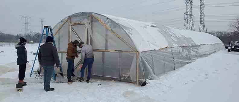Gurnee American Legion Post 771 Growing Healthy Veterans winter growing